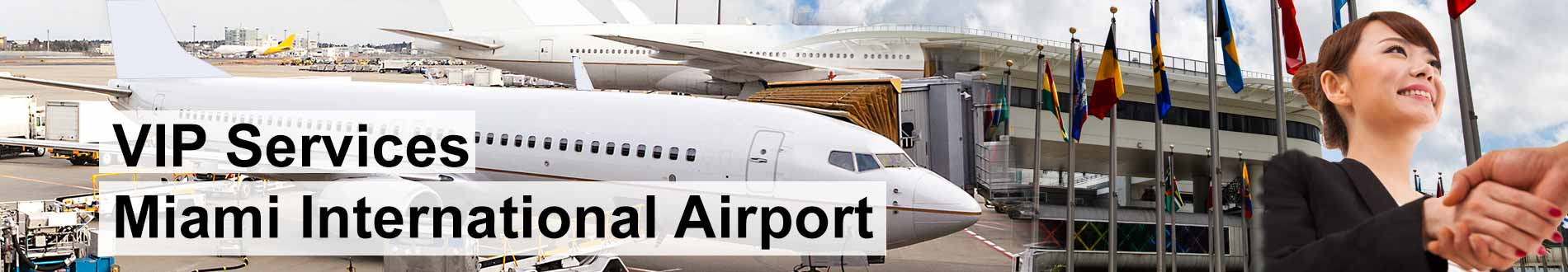 meet and assist airport